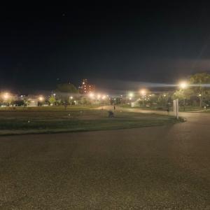 夜のランニング@川名公園