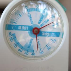 水耕栽培の養液温度調べ