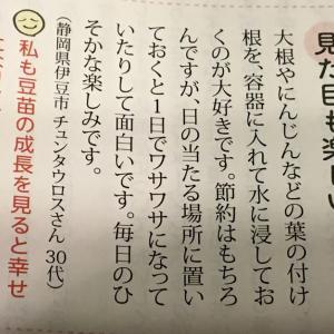 【リボベジ】mioという雑誌に掲載された私のコメントが貧乏くさかった話【皆やってるよね?】