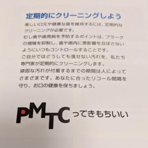 【PMTC】プロによる歯のクリーニングを受けてみた