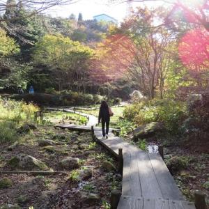 *六甲ミーツ・アート 芸術散歩2015*⑥