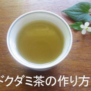 ドクダミ茶の作り方 作る時期と要れ方