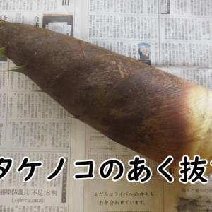 タケノコのあく抜きを米ぬかで。米ぬか以外ならコレがある!