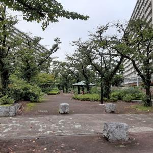 高島平団地の前谷津川