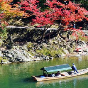 【京都】秋の嵐山を静かに過ごしたい方必見|地元民オススメの場所