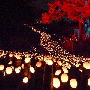 【大分】竹の明かりを楽しむスポット|竹田市の竹楽(ちくらく)