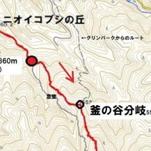 今年初登は 蛇谷ヶ峰で・・・3