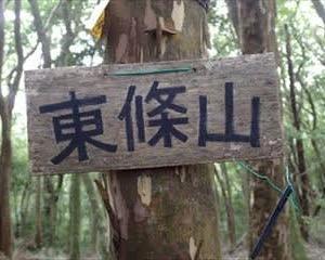 村界尾根からの久留野峠 4