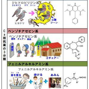 Ca拮抗薬3分類、ジヒドロピリジン、ベンゾチアゼピン系等の覚え方