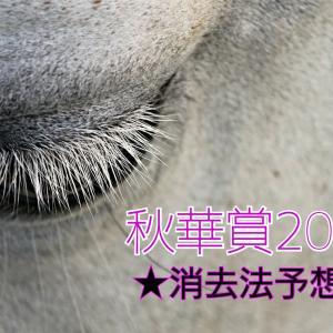 【秋華賞2021】過去10年の傾向から消去法でソダシを本命に推奨