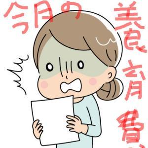 【未婚シンママの養育費】「はぁ」とAdoちゃんばりのがなり声で言いそうになった記帳