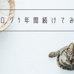 【ブログ開設から1年】自分なりのブログのあり方が見えてきた。