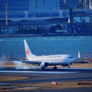 【新たな取り組み】日本航空が羽田空港でアナウンス「レディースアンドジェントルメン」廃止へ