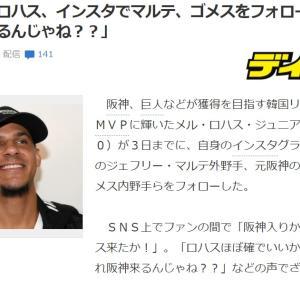 大アホ阪神ファンの典型