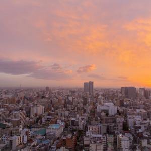 東京スカイツリーの美しい夜景が見られるホテル【第一ホテル両国】