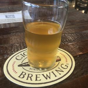 【フロリダ観光タンパ】穴場ビール醸造所