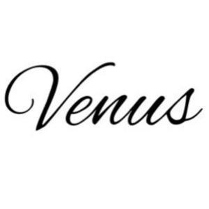 金星:蠍座の時間