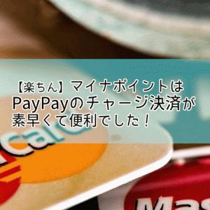 【楽ちん】マイナポイントはPayPayのチャージ決済が素早くて便利でした!