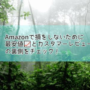 Amazonで損をしないために最安値📈とカスタマーレビューの裏側をチェック!