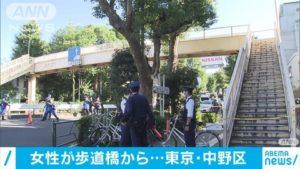 [画像・動画]環七の歩道橋で飛び降り自殺!現場を特定「肉片が残ってた」(東京中野区)