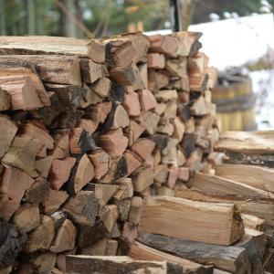 薪の種類と特徴 (MEMO)