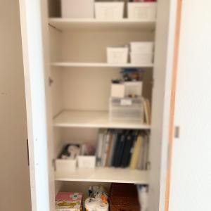 【整理収納サポート実例】リビング収納は快適な暮らしの要!