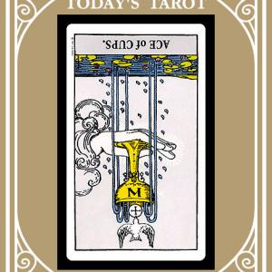 【2020.08.10】MESSAGE FROM TAROT