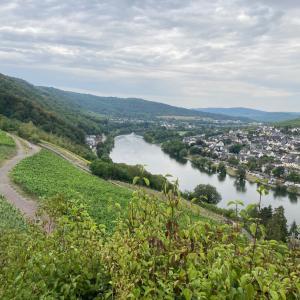モーゼル川滞在記: お城まで散歩 in Bernkastel-Kues