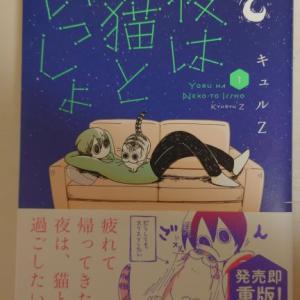 「夜は猫といっしょ」にはまりました!猫の日常をリアルに再現し、猫の不思議な生態を描いた作品です