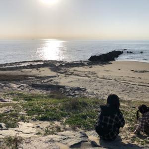 【TABIBITO】知多小野浦の海辺