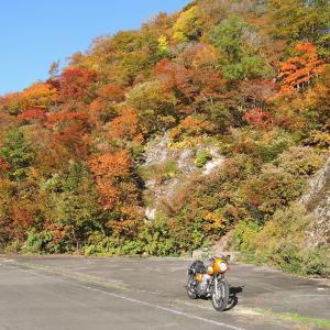 紅葉がすごかったPOINT 朝日スーパーライン🍁🍁🍁