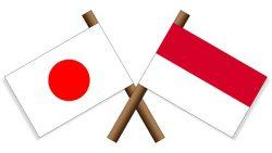 「モナコ」と「インドネシア」の国旗のデザインが同じ!唯一の違いは?