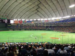 東京ドームが「広さ」や「大きさ」の基準に例えられる理由は?