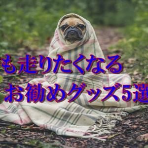 冬でも走りたくなるグッズ5選!!冬は防寒対策が大事!!