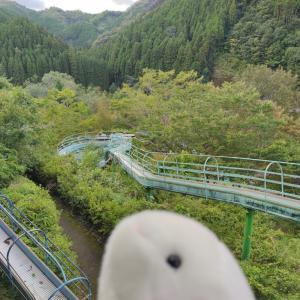 【佐伯 直川憩の森公園】九州一のローラー滑り台!家族で楽しいアウトドア旅行にどうぞ✨