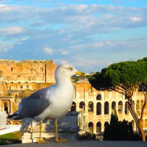 ローマの観光業界に明るい兆しが!?