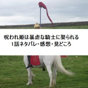 呪われ姫は暴虐な騎士に娶られる1話ネタバレ・感想・見どころ