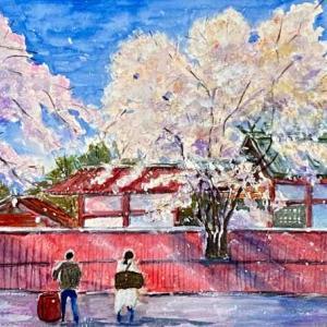 【京都風景スケッチ】車折神社の桜を透明水彩で描きました。早咲きの桜が嵯峨野の夕景の名所です。