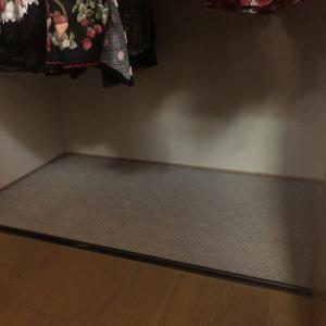 クローゼットの床を掃除と整理した話。