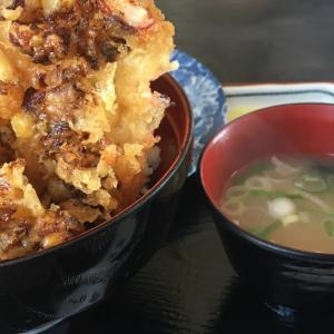 あいろーど厚田 前浜 海鮮丼とタコのかき揚げ丼