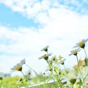 【35日目実績】前進に対する意識と取り組み方