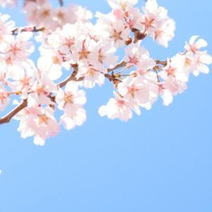 【217目実績】3月度組分けテスト前日