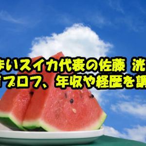 あまいスイカ代表の佐藤 洸氏のwikiプロフ、年収や経歴を調査!