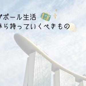 【シンガポール生活】日本から持っていくべきものまとめ