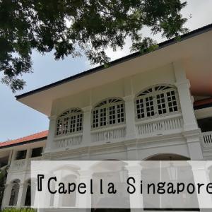 シンガポールの5つ星ホテル『カペラホテル』宿泊記録