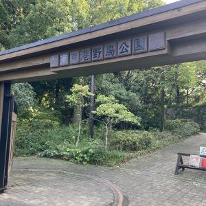 野鳥の楽園『東京港野鳥公園』に行ってきました