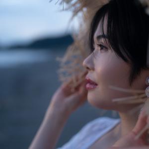 館山城に登り美味いハードパンを買い求め夕暮れの岩井海岸で花火した