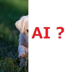 AIと人間の脳の仕組みは同じなのか?