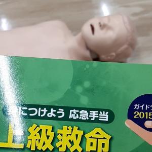 東京防災救急協会の上級救命講習を受講してみた