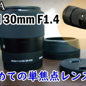 初めての単焦点レンズにオススメ「SIGMA DC DN F1.4 30mm」レビュー